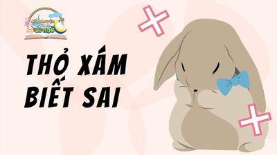 Thỏ Xám Biết Sai