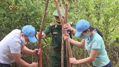 Điện Biên: Trồng 1.200 Cây Hoa Ban Vùng Biên Giới