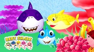 Gia Đình Nhà Shark