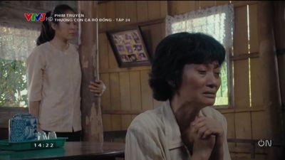 PHIM HAY: Thương Con Cá Rô Đồng - Tập 24