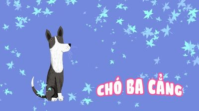 Chó Ba Cẳng