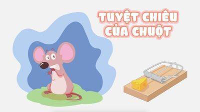 Tuyệt Chiêu Của Chuột